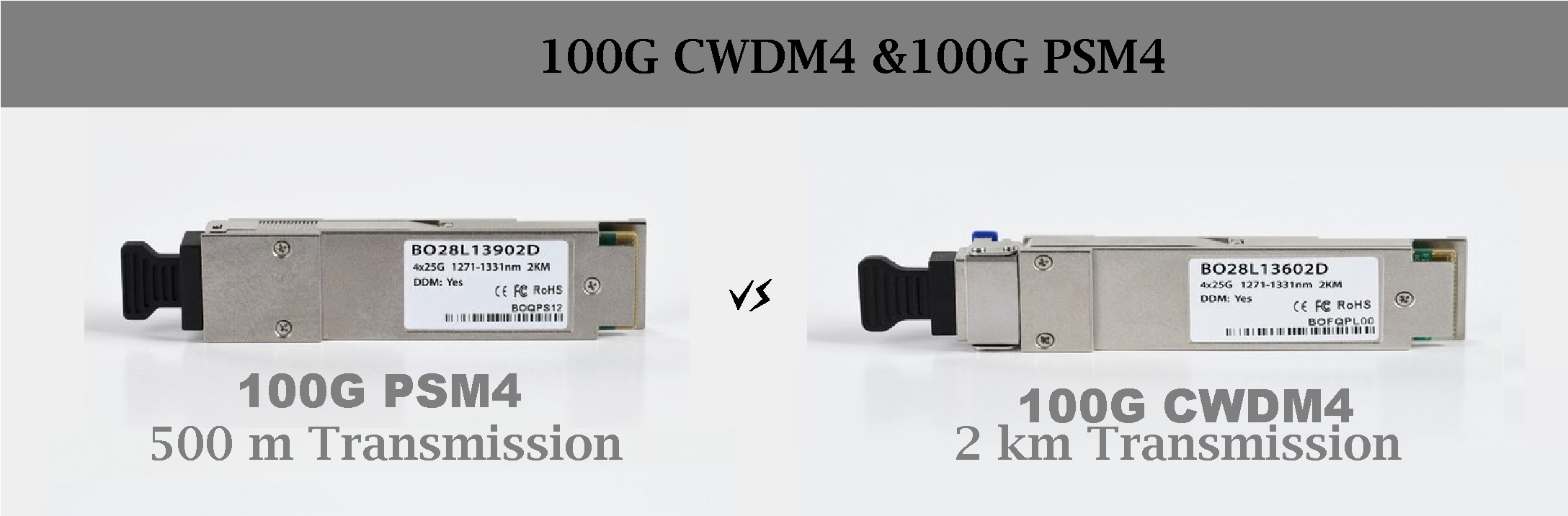 2_PSM4-CWDM4-Most-Promising-Solution-for-100G-Ethernet.png