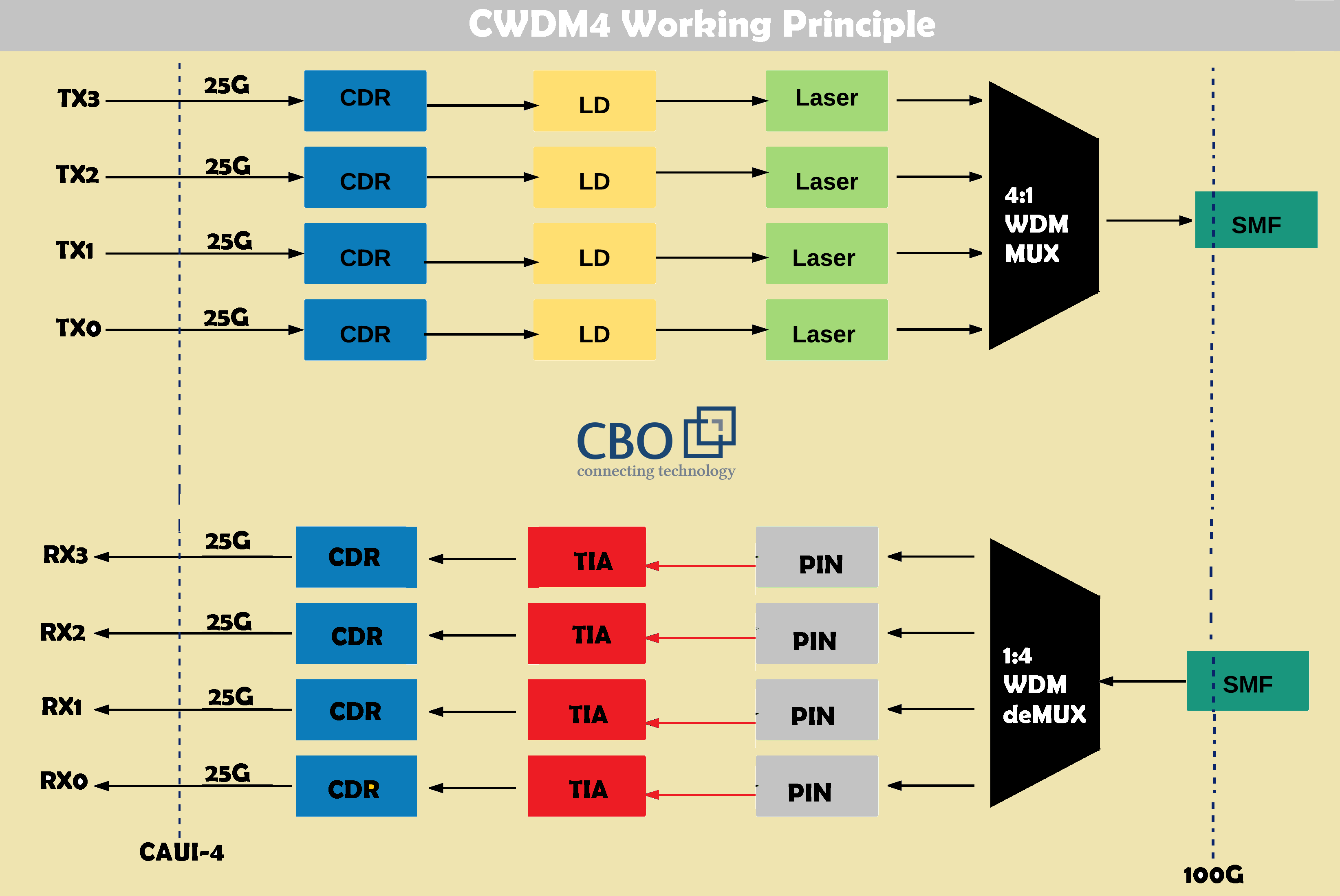 4_PSM4-CWDM4-Most-Promising-Solution-for-100G-Ethernet.png