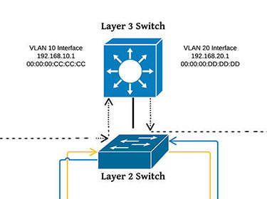 Basic facts about Layer 2 & Layer 3 Switches - Learn what the difference is!